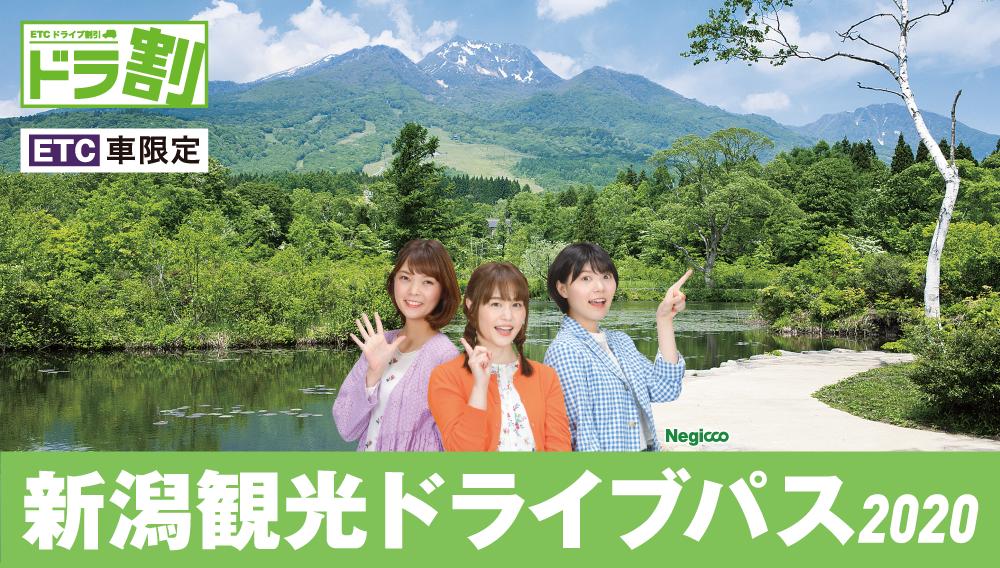 新潟 観光 ドライブ パス ドラ割『新潟観光ドライブパス』を7月21日から発売!