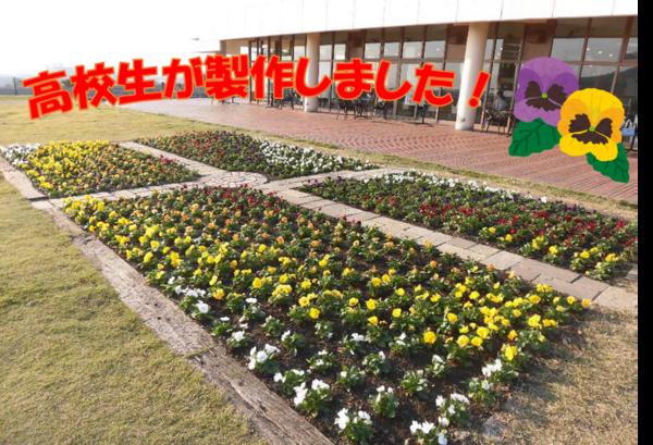 花壇2.png