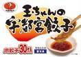 玉ちゃん餃子.JPG