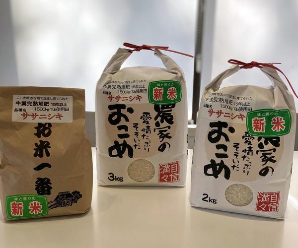 ササニシキ.JPG