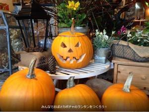 Screenshot_2019-10-07 ビューガーデン - 20th year (4).jpg