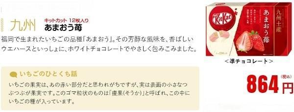 九州 あまおう苺.jpg