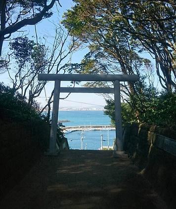 sakatsura.jpg