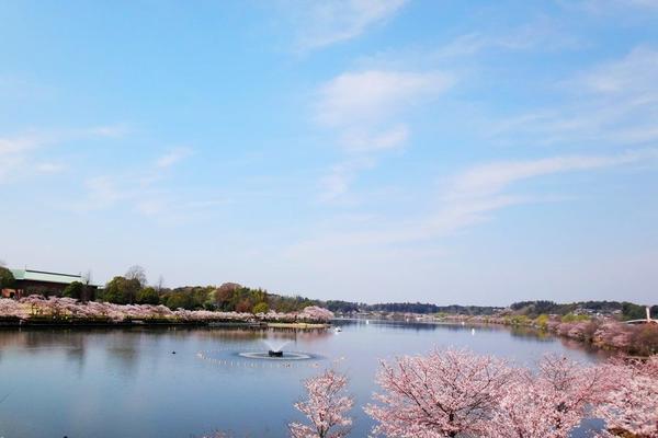 千波湖.jpg