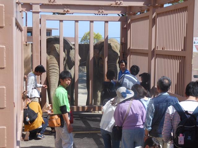 かみね動物園2.png