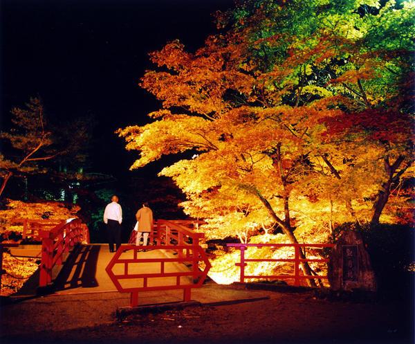もみじ谷10.28ブログc8b006m.jpg