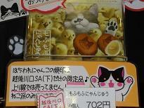2もふもふにゃんじゅう 8/31 .jpg