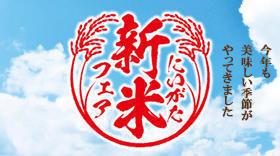 bnr_01-thumb-240xauto_shinmaifair.jpg